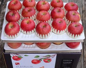 [파머story] 영주풍기사과농장 선물용 사과 8kg 27-32과 #중상과 #실속형 #부사
