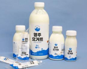 [소백밀크아트]호수목장 영주 요거트 300ml