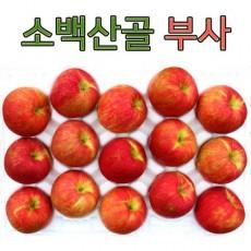 영주풍기사과농장 꿀맛사과 대용량 10kg 42~46과 가정용 흠집사과
