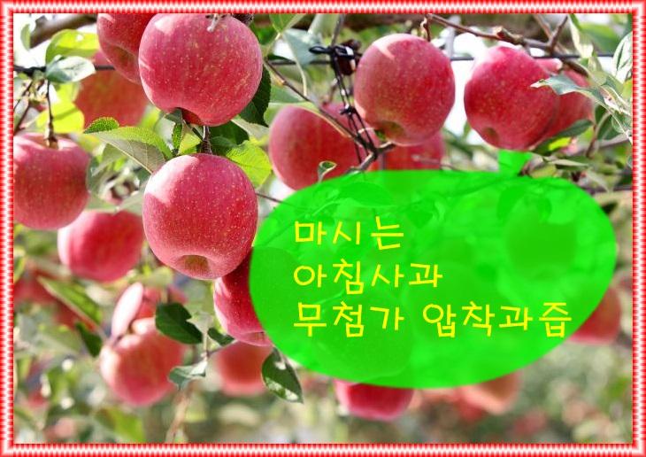 KakaoTalk_20200727_184428794.jpg