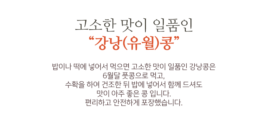유월콩2.PNG