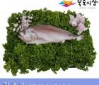 [죽도시장] 침조기(제수용생선) 30Cm-33Cm / 1마리 / 경북 동해안 최대 전통시장 죽도시장 특선 제수용 생선