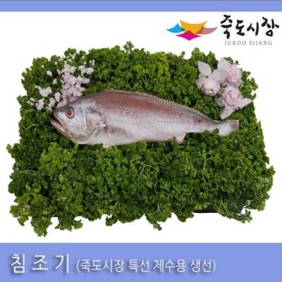 [죽도시장] 침조기(제수용생선) 33Cm-35Cm / 1마리 / 경북 동해안 최대 전통시장 죽도시장 특선 제수용 생선