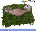 [죽도시장] 가자미(제수용생선) 33Cm-38Cm / 1마리 / 경북 동해안 최대 전통시장 죽도시장 특선 제수용 생선