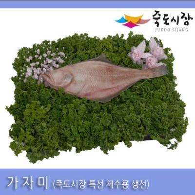 [죽도시장] 가자미(제수용생선) 40Cm-45Cm / 1마리 / 경북 동해안 최대 전통시장 죽도시장 특선 제수용 생선