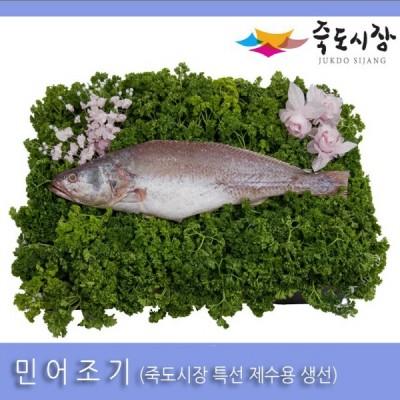 [죽도시장] 민어조기(제수용생선) 40Cm-45Cm / 1마리 / 경북 동해안 최대 전통시장 죽도시장 특선 제수용 생선