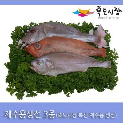 [죽도시장] 제수용생선 3종 Set(참돔, 적어, 침조기) 각 1마리 / 경북 동해안 최대 전통시장 죽도시장 특선 제수용 생선