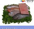 [죽도시장] 제수용생선 5종 Set(민어조기, 적어, 침조기, 우럭) 각 1마리 / 돔배기 500g / 경북 동해안 최대 전통시장 죽도시장 특선 제수용 생선