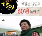 [백말순등겨장] 달인의 60년 노하우 백말순 청국쌈장-등겨장/청국쌈장/쌈장/전통장/발효식품