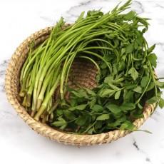 생야채로 먹는 신선한 청도미나리 1kg