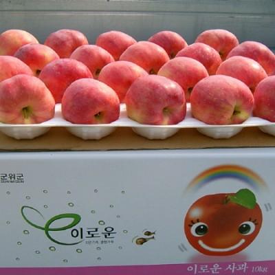 [청화농원]부사 사과10kg(34과)