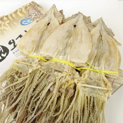 청정 자연 해풍으로 말린 마른 건오징어 大 옵션 5마리/10마리/20마리