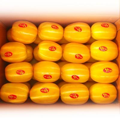 [성주참외농장] 성주초전참외 10kg(25-39과)특품