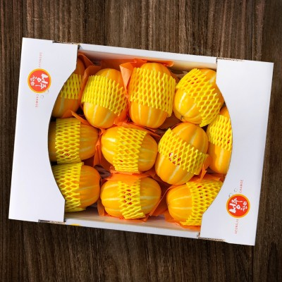[성주참외농장] 성주초전참외 5kg(11~24과)