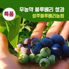 [성주블루베리농원] 무농약 블루베리 생과 특품 2kg