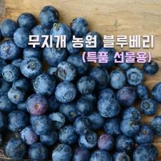 [무지개농원] 무농약 블루베리- 선물용 특품(17mm이상) kg당 25000원