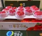 [옹점사과작목반]★친환경저농약 껍질째먹는사과★황금사과 선물용부사(명품) 5kg(13-14과)