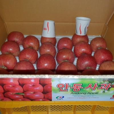 건강하게 키운 사과  5kg21과