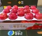 [옹점사과작목반]★친환경저농약 껍질째먹는사과★황금사과 부사 5kg (22~24과)
