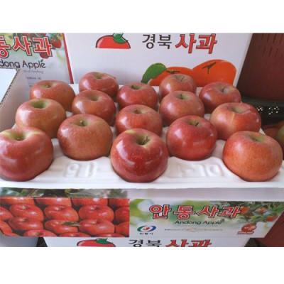 [일직중앙농장]사과 부사 10kg 상(30과내)