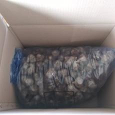 흑밭마늘 (통) 5.3kg