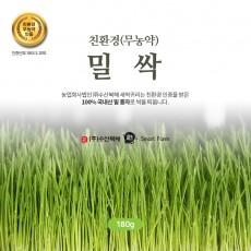 [수산복해] 친환경 인증 국내산 밀싹 분말 180g