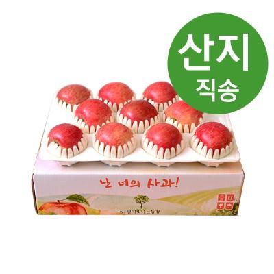 봉화미담 경북 햇사과 특품 3kg 8-11과 중상~대과 추석선물