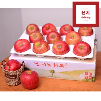 [선물 특가상품] 아삭아삭한 경북 햇사과 3kg 10~12과(중~중상과) 정품