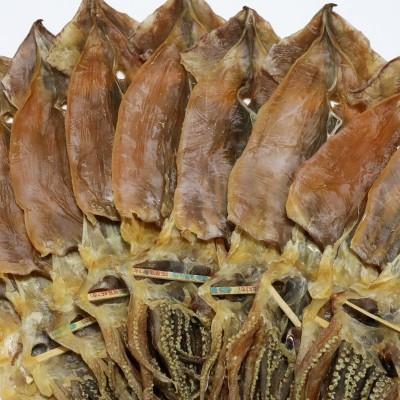 [제일쇼핑] 울릉도 건조오징어 10마리 (1kg)(사이즈:특대)
