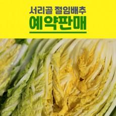 ★이웃사촌★ [내서서리골마을]서리골 절임배추20K(8포기~12포기)