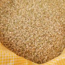 ★이웃사촌★ 근남면 사람들 현미쌀 1kg