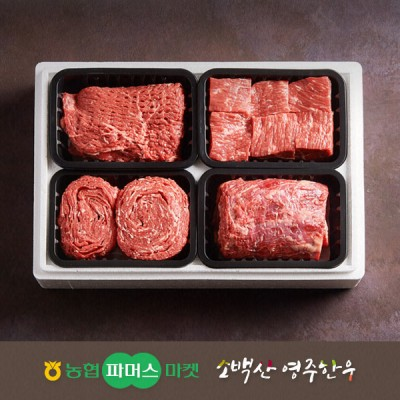 [21년설/냉장]소백산영주한우 정성 실속 정육혼합세트5호 불고기/국거리(양지)/장조림/산적 / 2.0kg