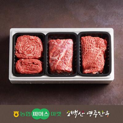 [21년설/냉장]소백산영주한우 정성 실속 정육혼합세트6호 불고기/국거리(양지)/산적 / 1.5kg