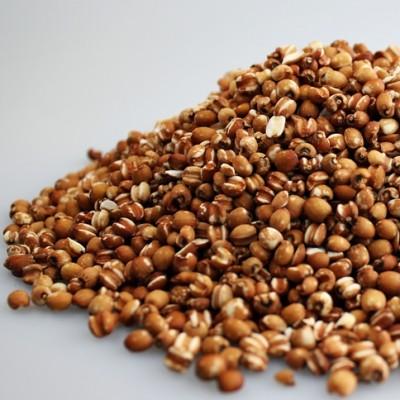 쌀아지매 2020년국내산 자연농법율무 사마귀 현미율무쌀 율무밥 현미율무