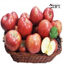 경북사과 햇 꿀 부사 사과10kg 5kg 3kg [산지직송] 산들정