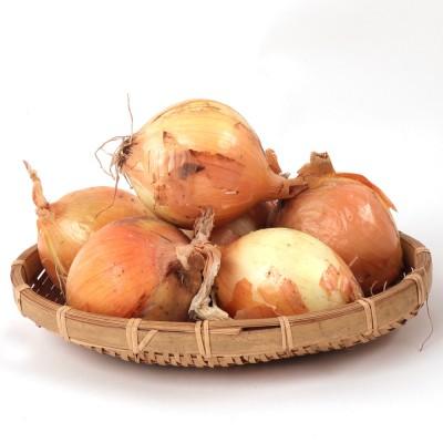 [엘푸드] 아삭아삭 속꽉찬 국내산 양파 (중대) 3kg 5kg 10kg