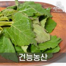 ★영양산나물축제★ 건능농산 곰취,당귀,어수리,취나물 1kg
