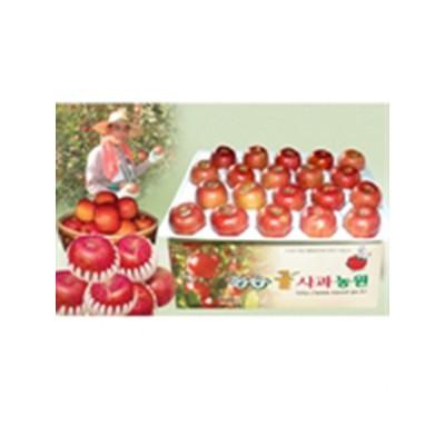 [청송꿀사과농원사과]청송사과가을부사8kg(35-40과)