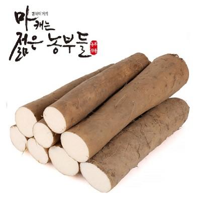 [안동마부용농산영농조합법인] 안동마 부용농산 참마 장마 (단중) 10kg