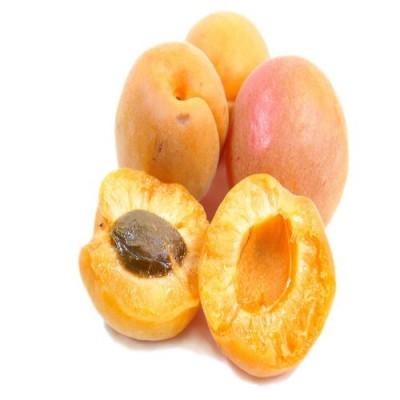 함초롬~노지에서 정성껏 키운 김천 실속 햇 살구 2kg (25~45과내)