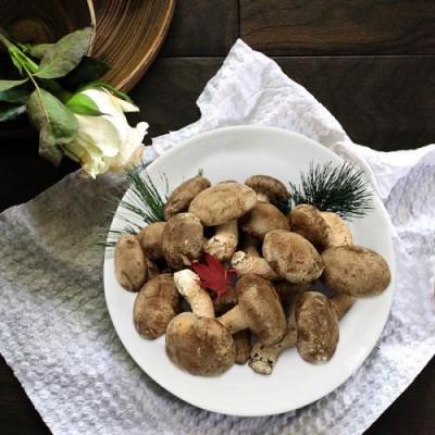 [그린벨트의친구들] 국내산 착한송이표고버섯 고급품 500g