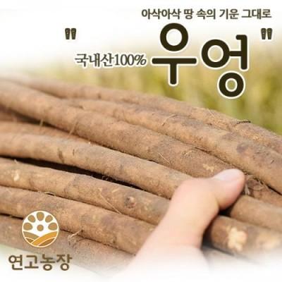 [연고농장]국내산 산지직송 햇우엉 2kg