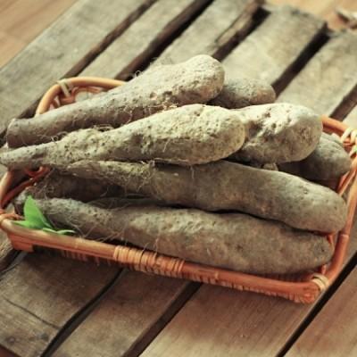 [건강밥상] [마 100% 국내산] 산마 중품 5kg 안동마 산지직송