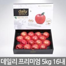 [Daily_사과]데일리 프리미엄 행운가득 5kg(19과내)