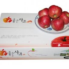 [부흥농원] GAP인증품껍질째먹는사과(부사) 5kg15-17과