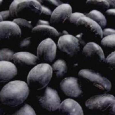 쌀아지매 2020년국내산 검은콩 검정콩 속파란콩 속청 서리태1kg