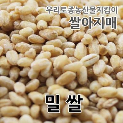 [쌀아지매] 우리밀 (밀쌀) 1kg
