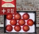봉화미담 사과선물세트 4kg 9~10과 제수용