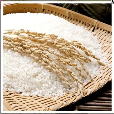 [와우농장] 백진주쌀10kg