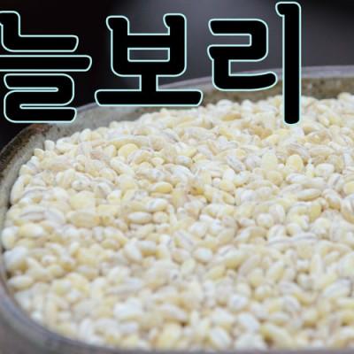 [회룡포 장수진품] 2019년 햇 늘보리쌀 5kg